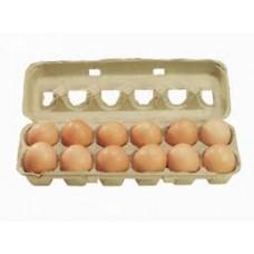 Eggs Fresher 600gm 12pk