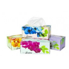 Facial Tissues 2ply 100sh Unit
