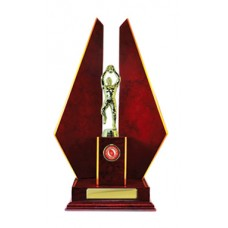 DOUBLE TRIANGLE WING TIMBER TROPHY 395MM