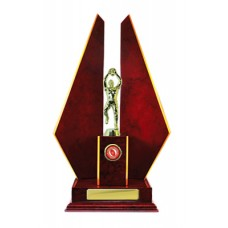 DOUBLE TRIANGLE WING TIMBER TROPHY 425MM